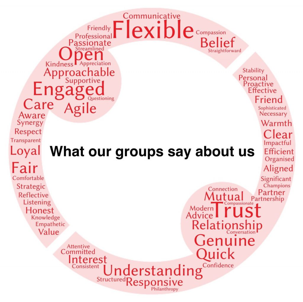 Word cloud of what grantees says about the Shears Foundation.
