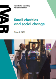 Small charities and social change cover