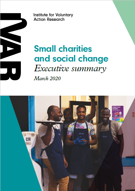 Summary - small charities and social change cover